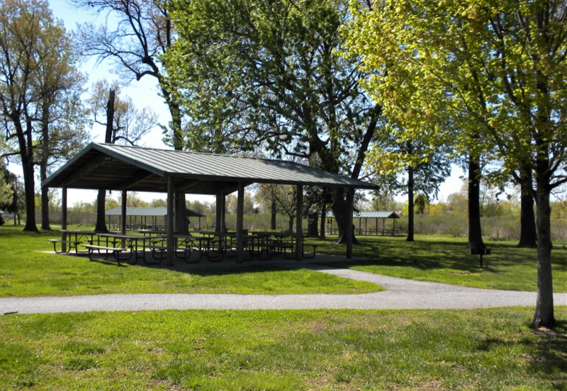 Chesterwood-Park-Canopy